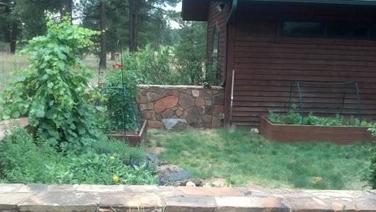 Tips For A High Desert Garden Garden Of Delights Blog